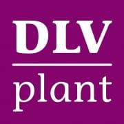 Case logo - ook internationaal de beste van de klas worden - DLV Plant